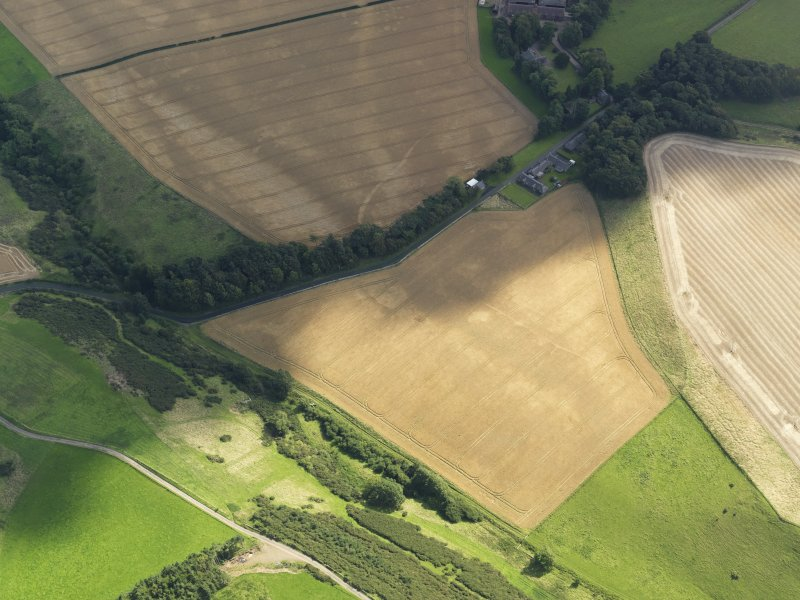 Oblique aerial view of the cropmarks of the field boundaries and pits, with the barrows, enclosure, track and field drain adjacent, taken from the WNW.