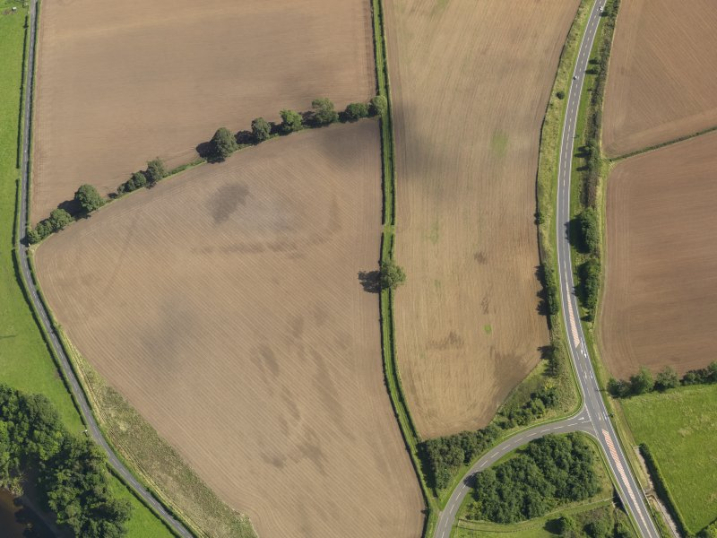 Oblique aerial view of the soilmarks of the W ditch of Newstead Roman fort, taken from the W.