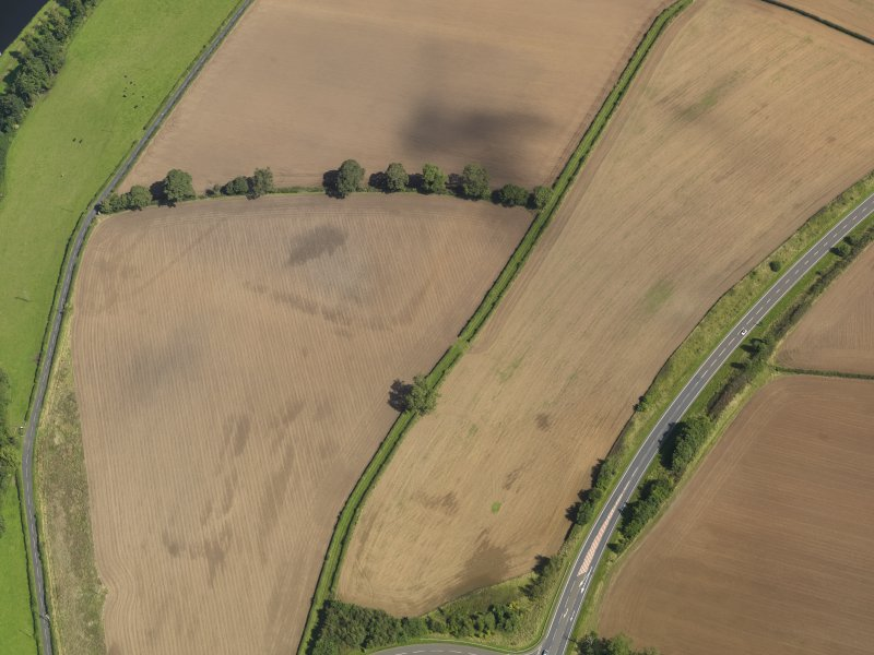 Oblique aerial view of the soilmarks of the W ditch of Newstead Roman fort, taken from the WSW.