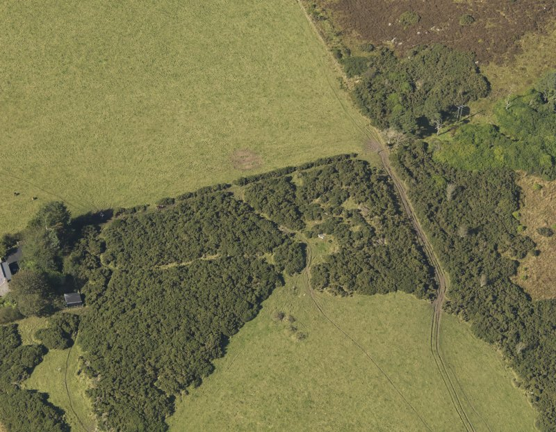 Oblique aerial view of the remains of the recumbent stone circle at Auchlee, taken from the SE.