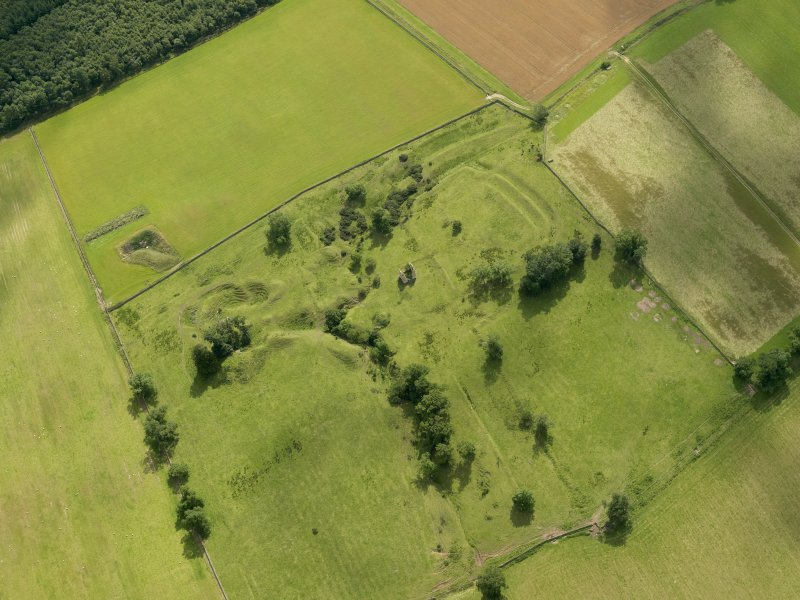 Oblique aerial view of Timpendean Tower and adjacent earthworks, taken from the N.