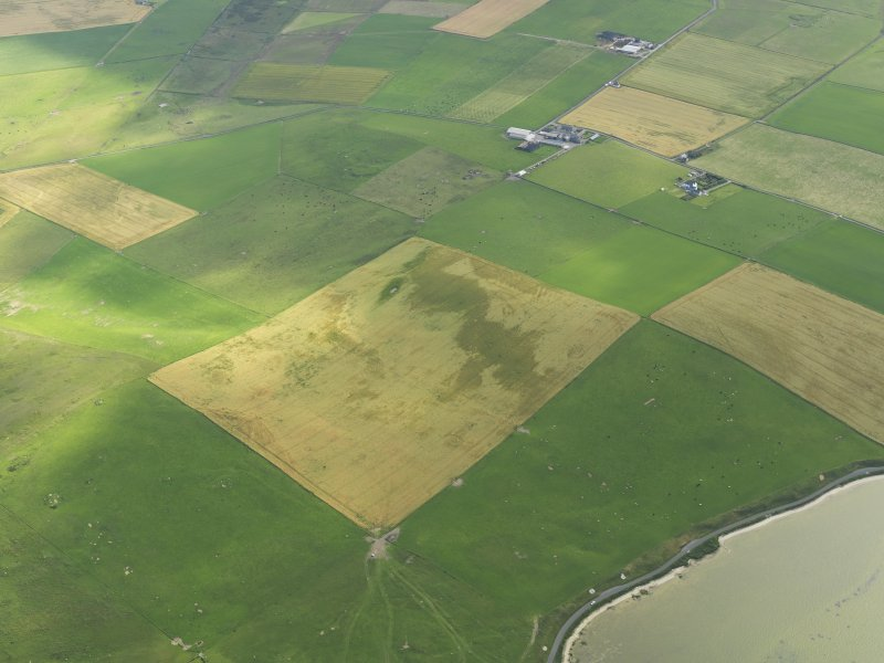 Oblique aerial view of the cropmarks of the possible enclosure, taken from the SE.
