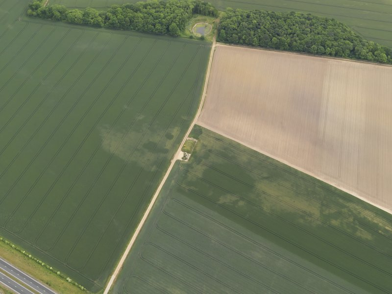 Oblique aerial view of the cropmarks of the possible quarries, taken from the NW.