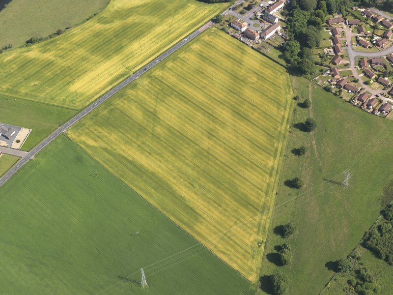 Oblique aerial view of the cropmarks of the cursus monument, enclosure and henge at Drybridge, taken from the NW.