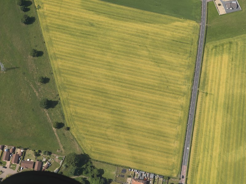 Oblique aerial view of the cropmarks of the cursus monument and pits at Drybridge, taken from the SSE.