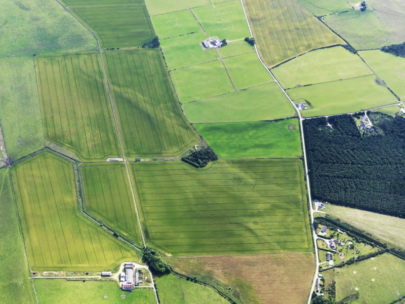 Oblique aerial view of cropmarks of the possible enclosure and possible roundhouse, looking E.
