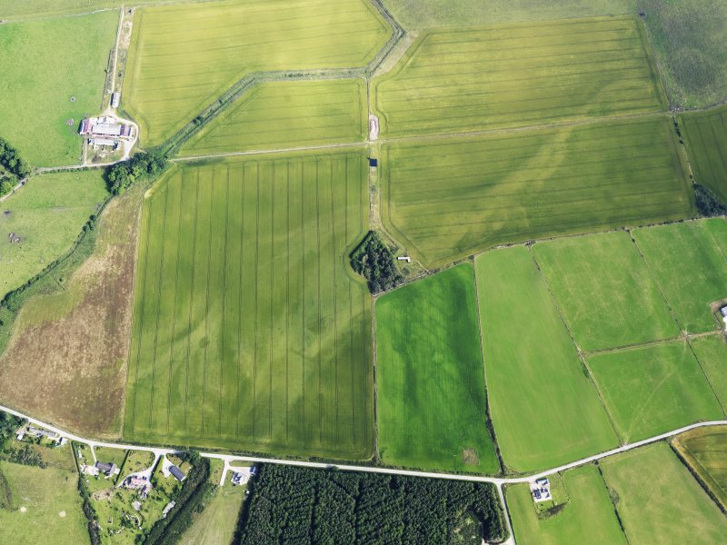 Oblique aerial view of cropmarks of the possible enclosure and possible roundhouse, looking N.