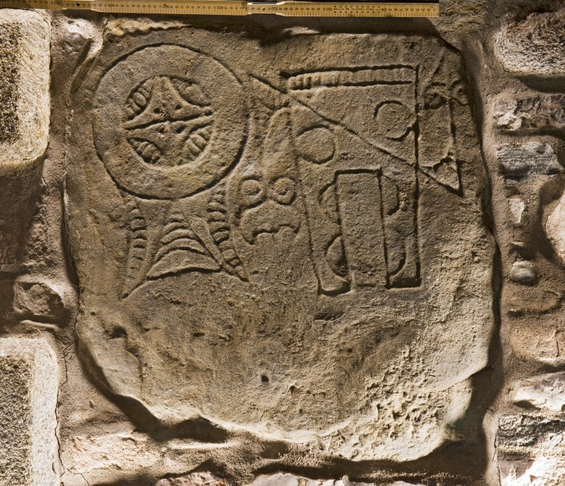 View of Pictish symbol stone, Arndilly (with scale)