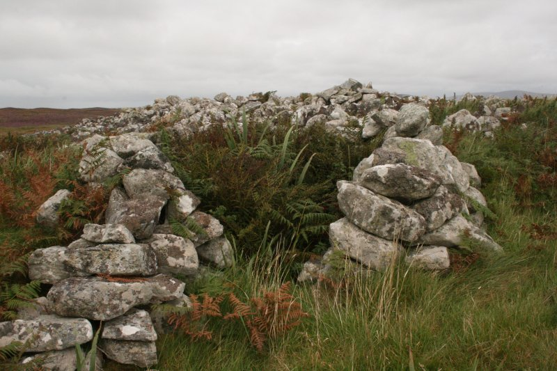 View of oval hut overlying cairn.