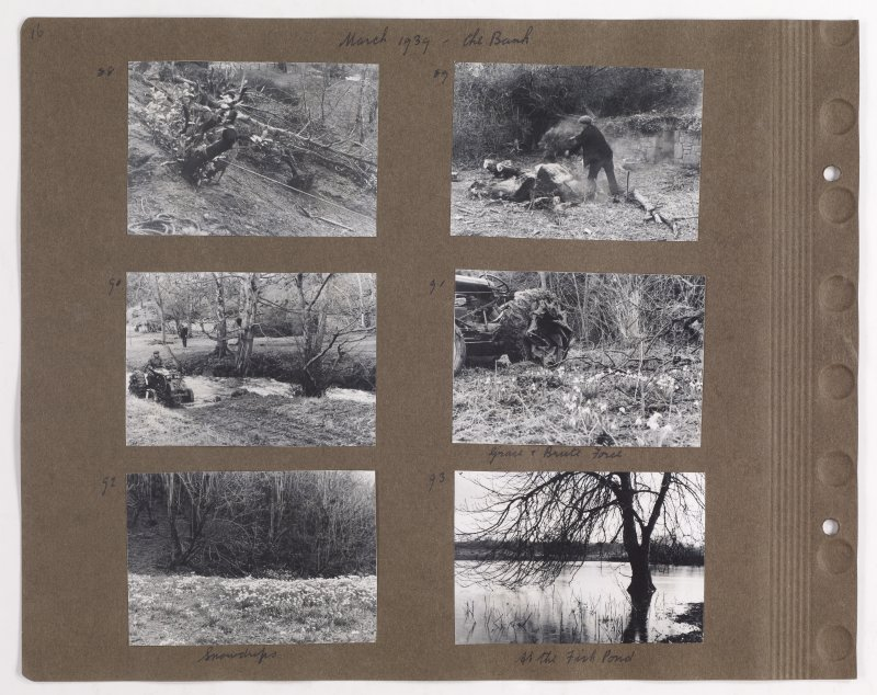Six album photographs showing forest clearing at Addistoun House. Page titled: 'March 1939 - the bank'. PHOTOGRAPH ALBUM NO.145: ADDISTOUN