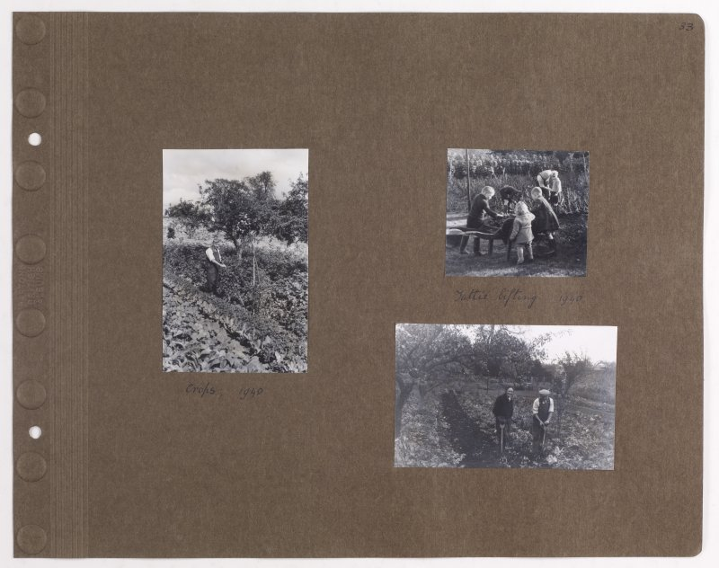Three album photographs showing farming at Addistoun House. PHOTOGRAPH ALBUM NO.145: ADDISTOUN