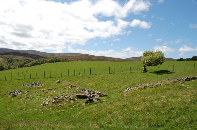 Wester Gaulrig: building 1 and enclosure looking W