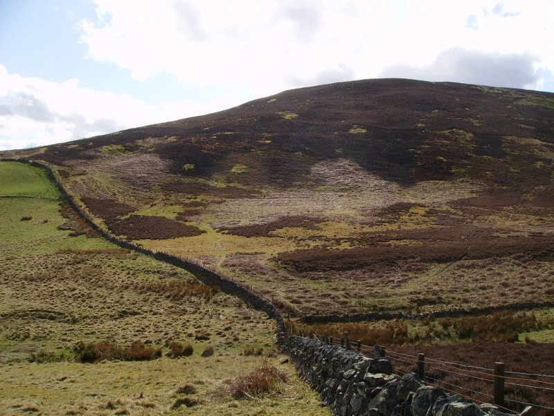 Grain Burn: looking SW, showing Penicuik / Logan estate boundary wall overlying the SE edge of the enclosure