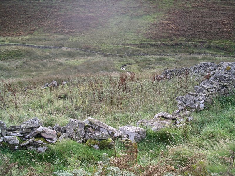 Cockrigend: sheepfold at NT 15005 58647