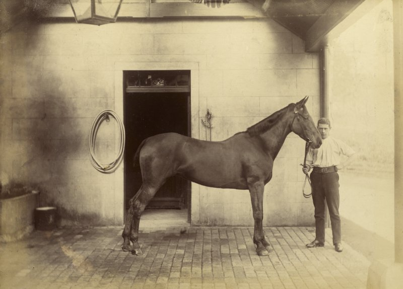 View of horse and stable boy at St Fort House.