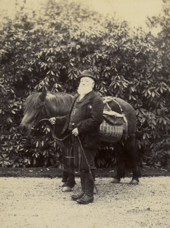 View of elderly man with a pony.