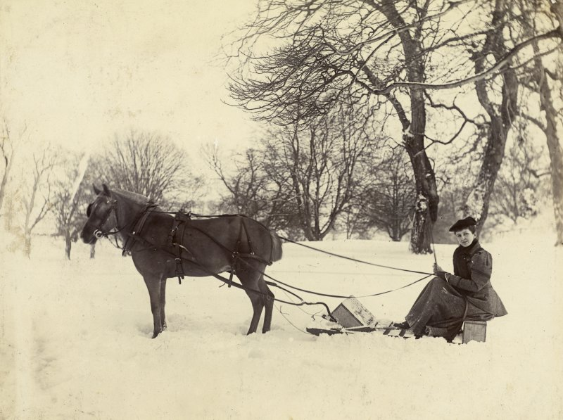 View of woman driving horse-drawn sledge probably in the grounds of St Fort House.