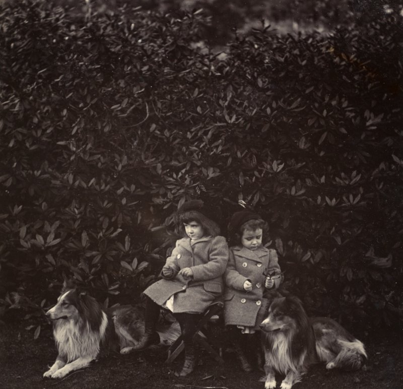 View of two little girls with two dogs possibly in the garden at St Fort House.