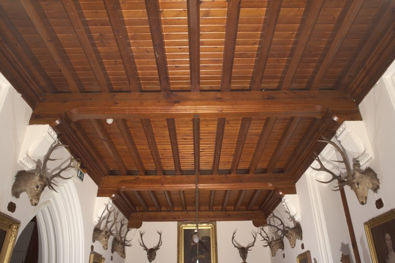 Interior.  First floor, upper hall, view of ceiling from north