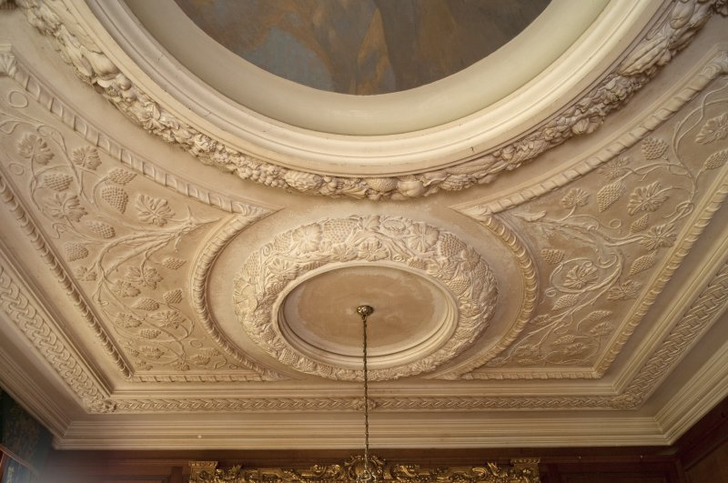 Interior. 1st floor, saloon, detail of plasterwork on ceiling