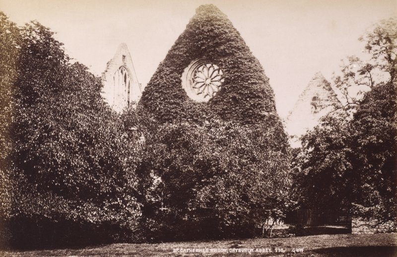 Dryburgh Abbey, detail of St Catherine's window. Titled: 'St Catherine's Window, Dryburgh Abbey. 998. G W W'. PHOTOGRAPH ALBUM No 195: PHOTOGRAPHS BY G W WILSON & CO. p.95.
