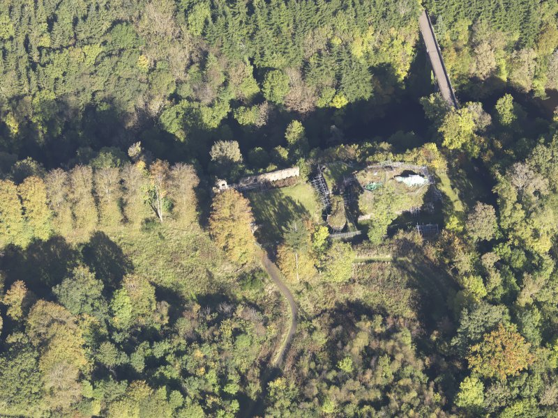 Oblique aerial view of Cadzow Castle, taken from the SSW.