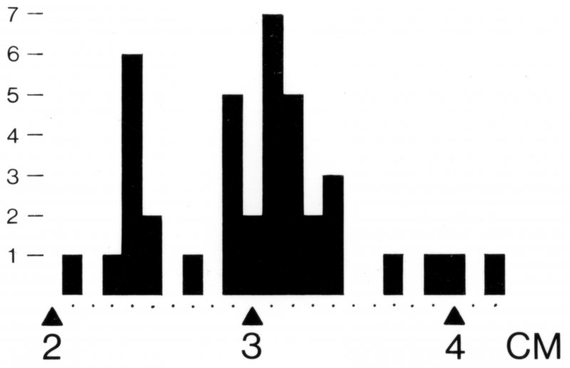 Bar-chart showing plank-joint thicknesses as indicated by the shank-length between the rivet-head and rove of the boat fastenings (see Perth15 and 19).