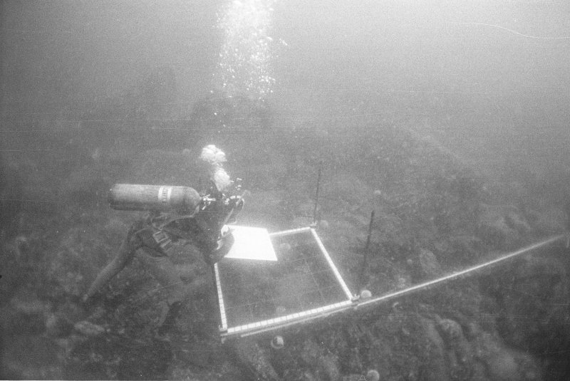 Keith Muckelroy drawing the large anchor, almost certainly belonging to El Gran Grifón, found some 60m to seaward of the main site in a depth of  23m (1977).