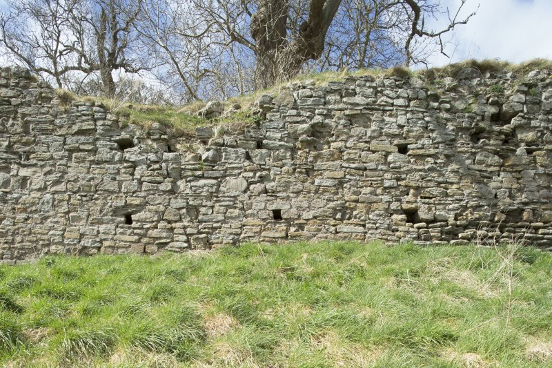 Third in a series of views of the Teviotsdie curtain wall of Roxburgh castle showing putlog holes, from the SE