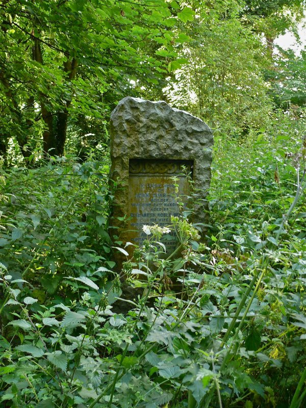 View of gravestone in memory of Adam Curry, builder, Newington Cemetery, Edinburgh. Surrounded by foliage.