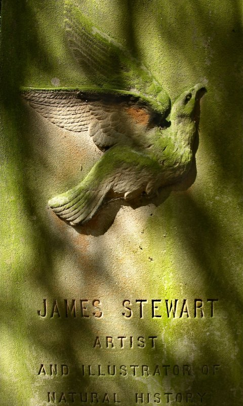 Detail of Dove relief on gravestone in memory of James Stewart, Artist and Illustrator of Natural History. Located near the central circle of Newington Cemetery, Edinburgh.