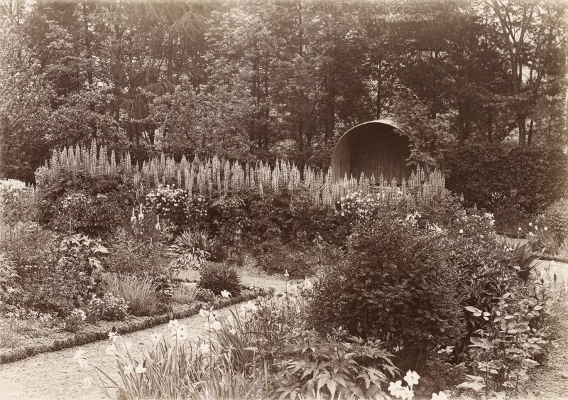 Dalmore House. Gardens c.1905. From family abum of Mr K Montgomery. Survey of Private Collection