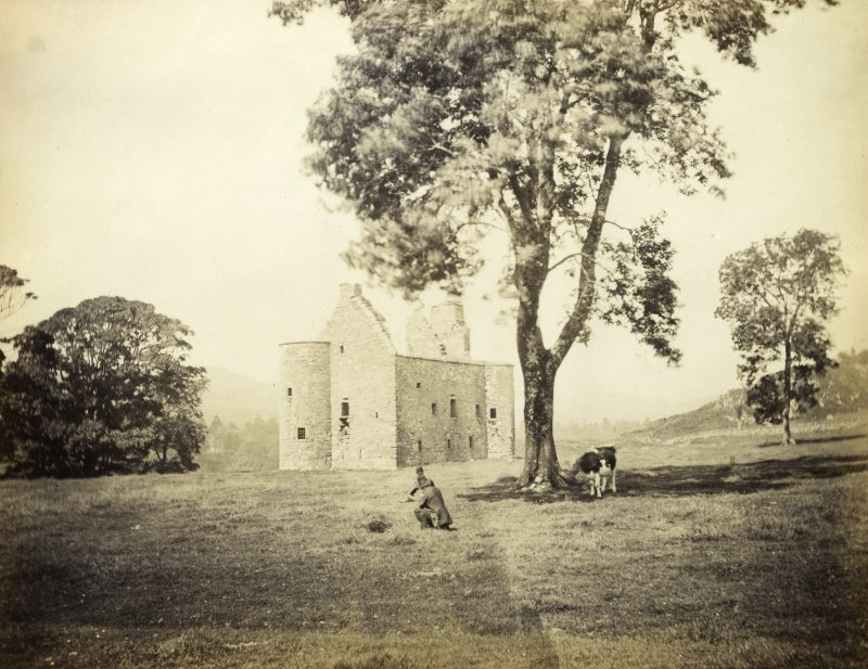 View of Kilmartin Castle ruined tower house with male figure and cow in foreground, Kilmartin, Argyll and Bute. Titled: '181. Kilmartin Castle, Argyll.' PHOTOGRAPH ALBUM NO 186: J B MACKENZIE ALBUMS vol.1