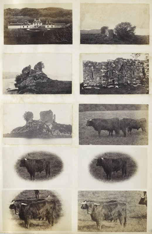 View of ten small photographs variously identified; the top five images are variously identified buildings or ruins and the lower five images are of highland cattle.  Of the identifiable buildings, the upper-left image is a view of the front of Colonsay House, Colonsay, Argyll. The upper-right image is a wide view of the ruins of a medieval parish church, dedicated to St Columba, known as 'Kilneuair Chapel', at Kilmichael Glassary, Argyll. The upper-central left image is a view of a boat moored at the Fincharn Castle ruins on the south end of Loch Awe, Argyll. The upper-central right image is another, more detailed, view of the ruins of a medieval parish church, dedicated to St Columba, known as 'Kilneuair Chapel', at Kilmichael Glassary, Argyll. The central right image is another, more detailed, view of the Fincharn Castle ruins on the south end of Loch Awe, Argyll.   PHOTOGRAPH ALBUM No. 187, (cf PAs 186 and 188) Rev. J.B. MacKenzie of Colonsay Albums,1870, vol.2.