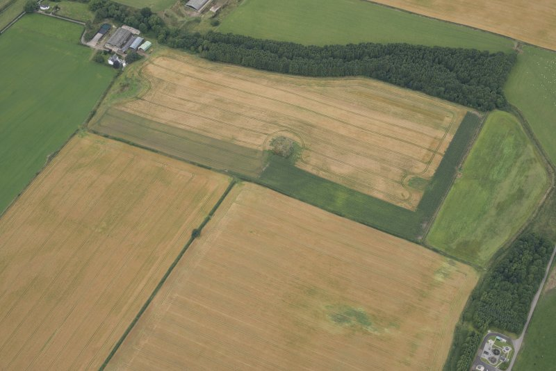 Oblique aerial view of the cropmarks of the fort at Gars Hill, looking NNW.