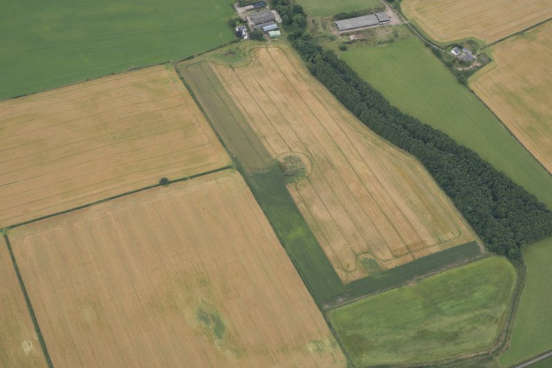 Oblique aerial view of the cropmarks of the fort at Gars Hill, looking NW.