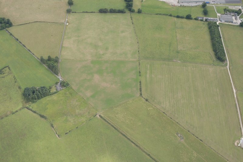 Oblique aerial view of the parchmarks of the enclosure, looking SE.