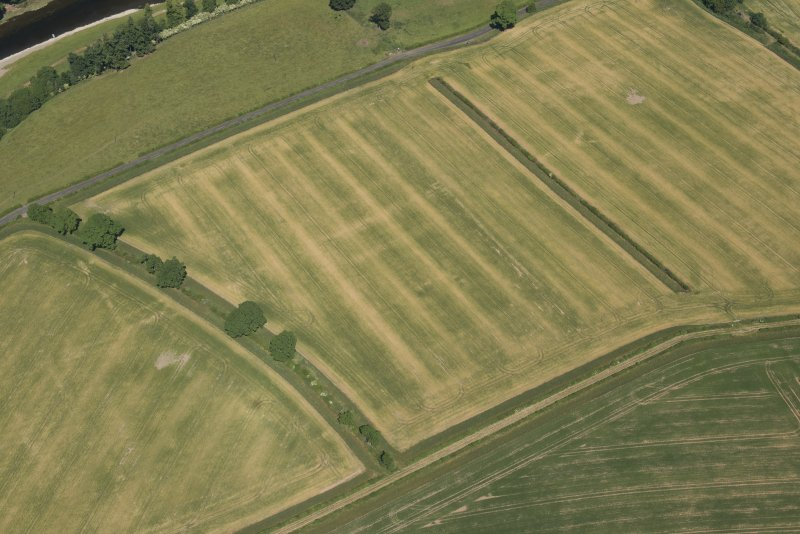 Oblique aerial view of the cropmarks of the Roman fort at Newstead, looking NE.