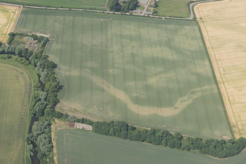 Oblique aerial view of the cropmarks of the cursus, enclosure and linear features at Preston Mains, looking N.