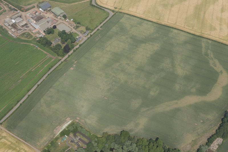 Oblique aerial view of the cropmarks of the cursus, enclosure and linear features at Preston Mains, looking NE.
