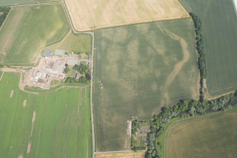 Oblique aerial view of the cropmarks of the cursus and other features at Preston Mains, looking E.