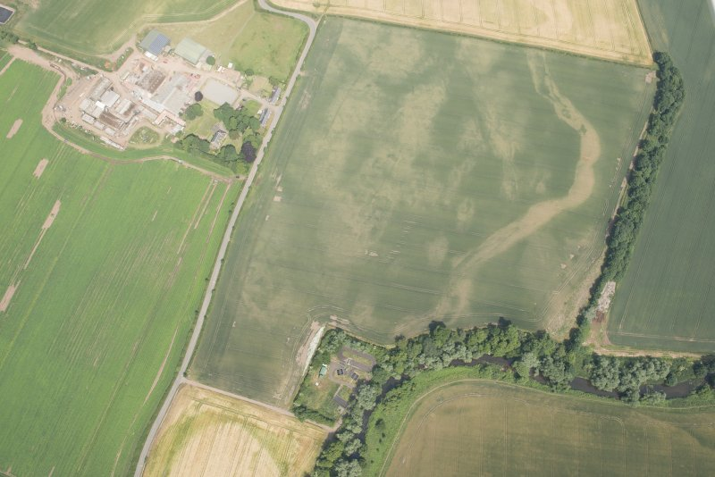 Oblique aerial view of the cropmarks of the cursus and other features at Preston Mains, looking NE.
