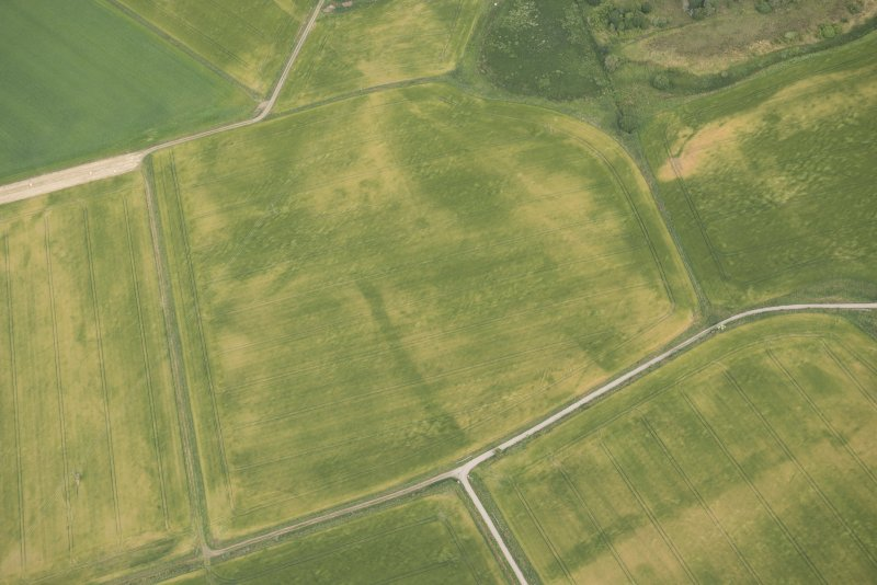 Oblique aerial view of the cropmarks of the possible road and the possible round houses, looking N.