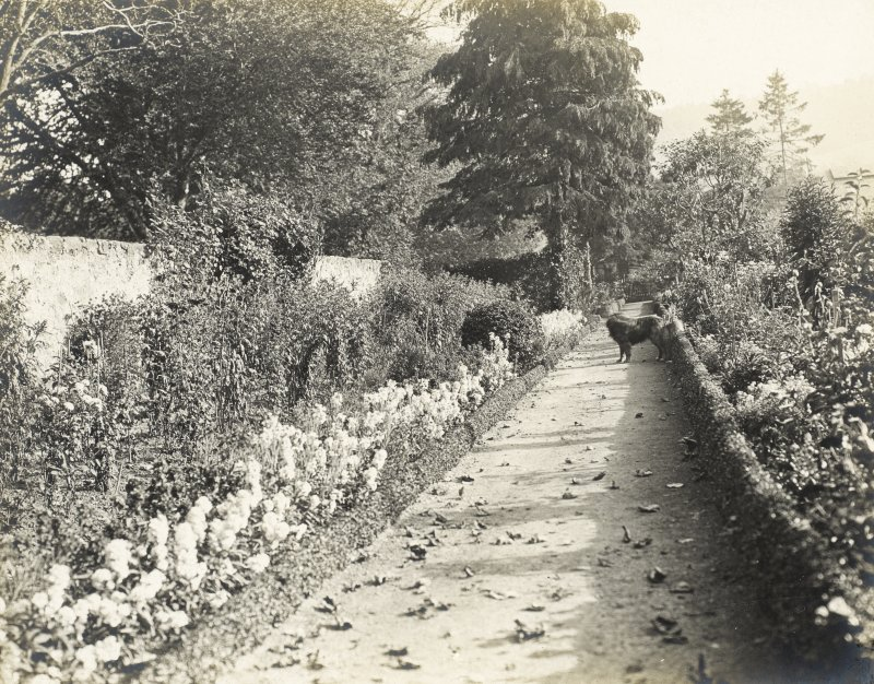 View of garden at Balmacaan House. Titled: 'Kitchen Garden' PHOTOGRAPH ALBUM No.32: BALMACAAN ALBUM.