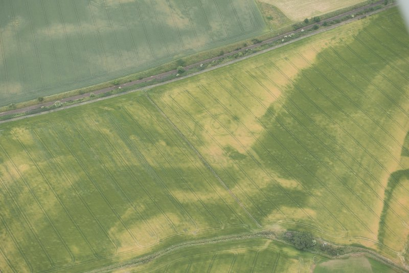 Oblique aerial view of the cropmarks of the palisaded enclosures, looking SE.