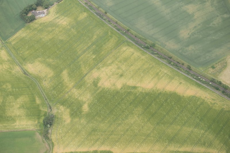 Oblique aerial view of the cropmarks of the palisaded enclosures and round house, looking E.