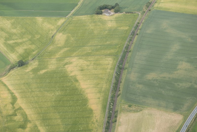 Oblique aerial view of the cropmarks of the palisaded enclosures and round house, looking NE.