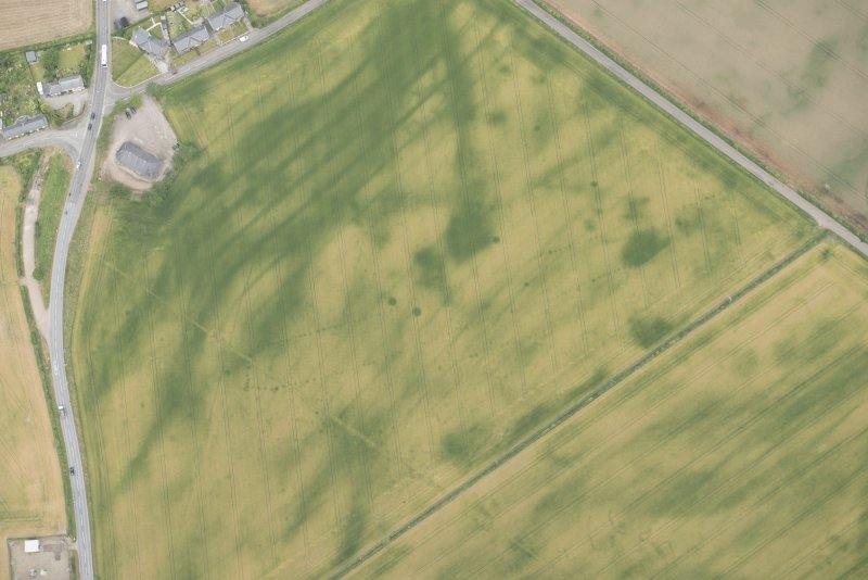 Oblique aerial view of the cropmarks at Inchbare South, looking N.
