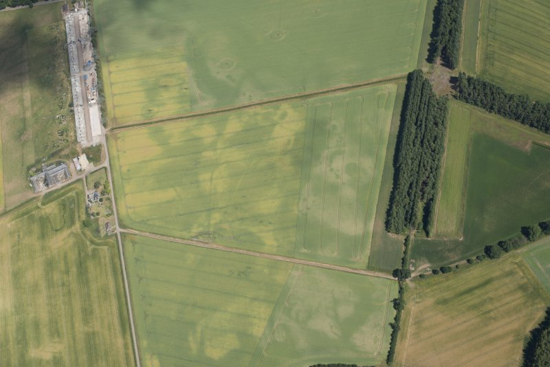 Oblique aerial view of the cropmarks at Mains of Innerpeffray, looking NE.
