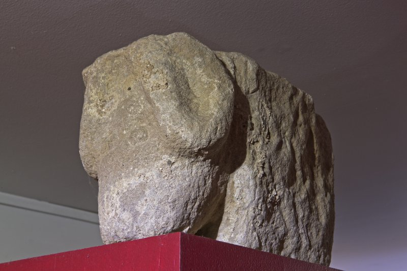 Interior. Fragment of ramshead corbel in Whithorn Museum.